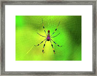 Framed Print featuring the digital art 42- Come Closer by Joseph Keane