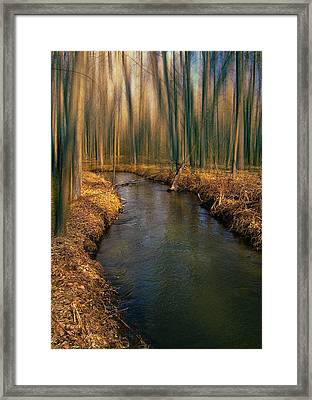 4214 Framed Print by Peter Holme III