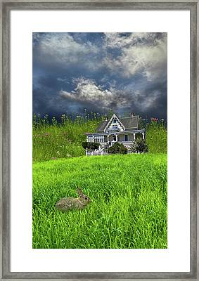 Framed Print featuring the photograph 4379 by Peter Holme III