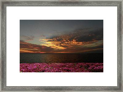 Framed Print featuring the photograph 4380 by Peter Holme III