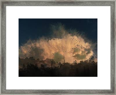 Framed Print featuring the photograph 4382 by Peter Holme III