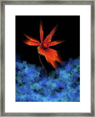 Framed Print featuring the photograph 4383 by Peter Holme III
