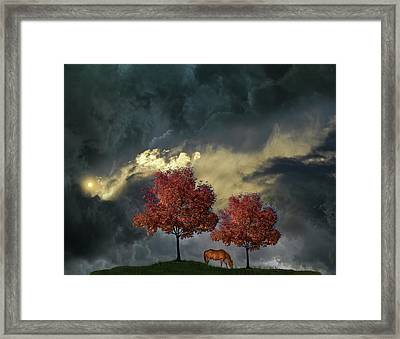 Framed Print featuring the photograph 4384 by Peter Holme III