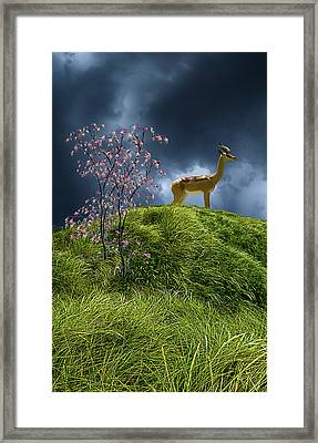 Framed Print featuring the photograph 4388 by Peter Holme III