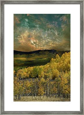 Framed Print featuring the photograph 4394 by Peter Holme III