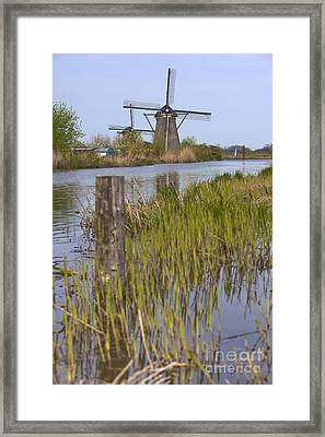 Mills In Netherlands Framed Print by Andre Goncalves