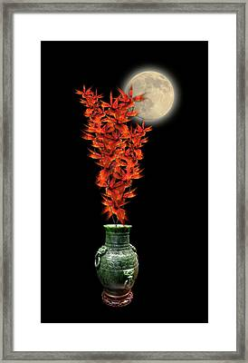 Framed Print featuring the photograph 4406 by Peter Holme III