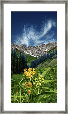 Framed Print featuring the photograph 4415 by Peter Holme III