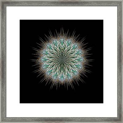 Framed Print featuring the photograph 4418 by Peter Holme III