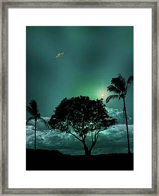 Framed Print featuring the photograph 4420 by Peter Holme III