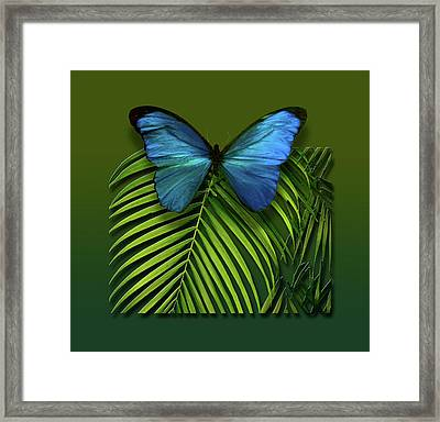 Framed Print featuring the photograph 4426 by Peter Holme III