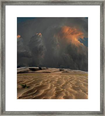 Framed Print featuring the photograph 4450 by Peter Holme III