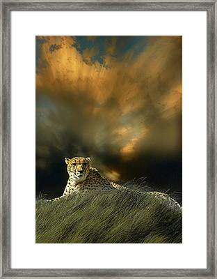 Framed Print featuring the photograph 4452 by Peter Holme III