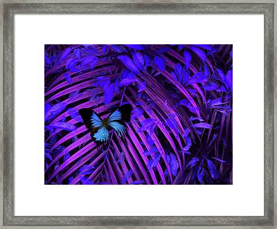 Framed Print featuring the photograph 4454 by Peter Holme III