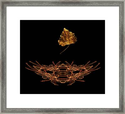 Framed Print featuring the photograph 4473 by Peter Holme III