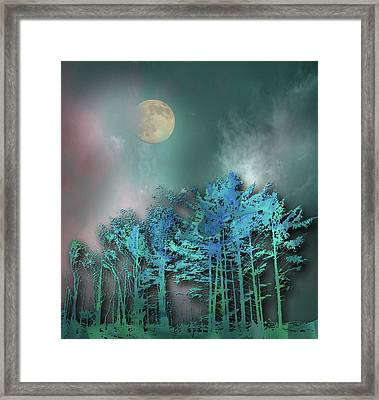 Framed Print featuring the photograph 4480 by Peter Holme III