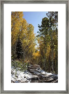 Rocky Mountain Fall Framed Print