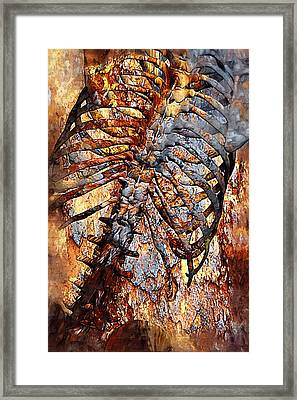 Torso Skeleton Framed Print by Joseph Ventura