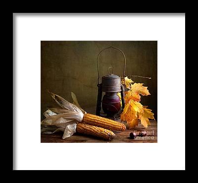 Corn Framed Prints