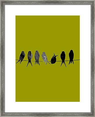 Birds On A Wire Collection Framed Print by Marvin Blaine
