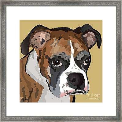 Boxer Dog Portrait Framed Print