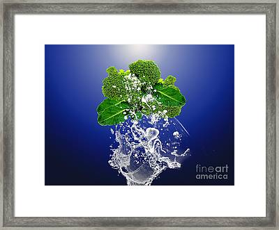 Broccoli Splash Framed Print by Marvin Blaine