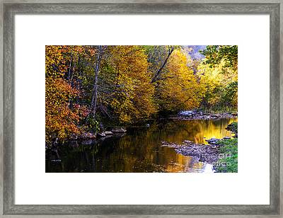Fall Color Gauley River Headwaters Framed Print by Thomas R Fletcher
