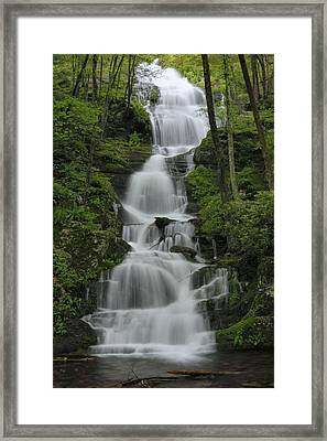 Forest Waterfall Framed Print by Stephen  Vecchiotti
