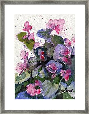 Framed Print featuring the painting My Annual Begonias by Kris Parins