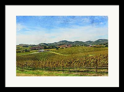 Sonoma County Vineyards Digital Art Framed Prints