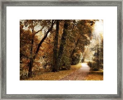 October Trail Framed Print