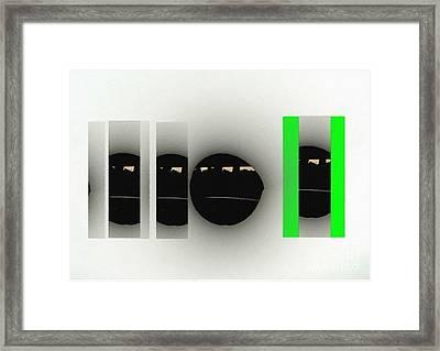 5 Seasons Of Life Framed Print