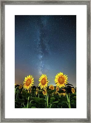 Sunflower Galaxy IIi Framed Print