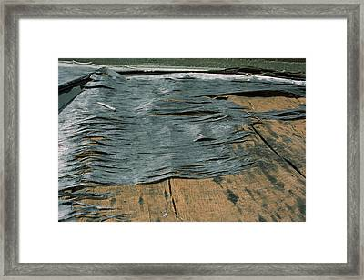 Texture Framed Print by Ric Aldrich