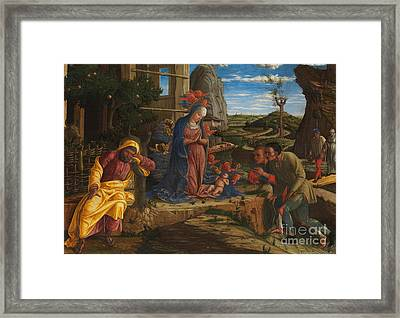 The Adoration Of The Shepherds Framed Print by Andrea Mantegna