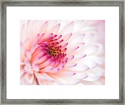 Untitled Framed Print by John Mueller