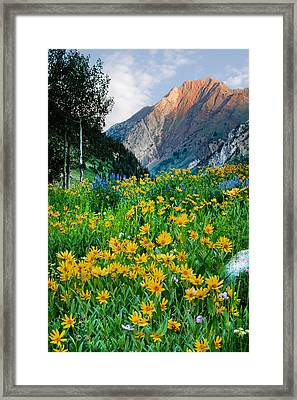 Wasatch Mountains Framed Print