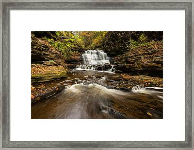 Ricketts Glen State Park Pennsylvania Framed Print