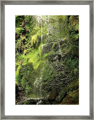 Waterfall Framed Print by Svetlana Sewell