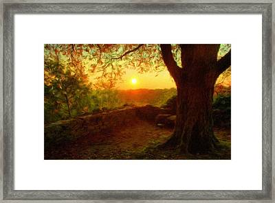 Nature In Framed Print