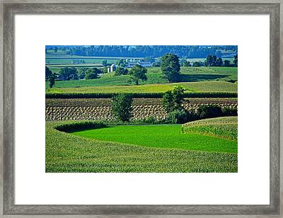 50 Shades Of Green Framed Print
