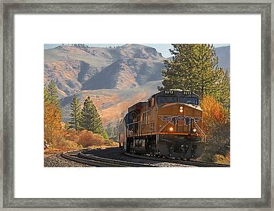 5273 Framed Print by Donna Kennedy
