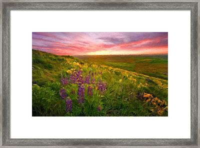 D J Landscape Framed Print