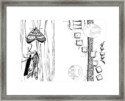 5.4.japan-1-butterfly-and-walkway Framed Print