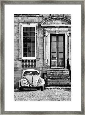 56 Beetle Framed Print by Tim Gainey