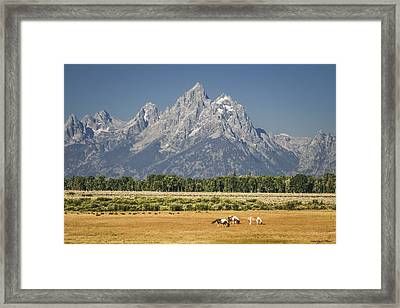 #5687 - Wyoming Framed Print
