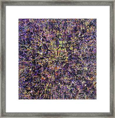 57-offspring While I Was On The Path To Perfection 57 Framed Print