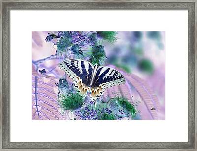5807 2 Framed Print by Jim Simms