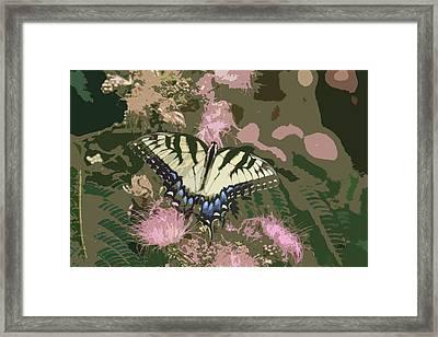 5807 3 Framed Print by Jim Simms