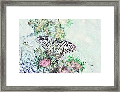 5807 5 Framed Print by Jim Simms